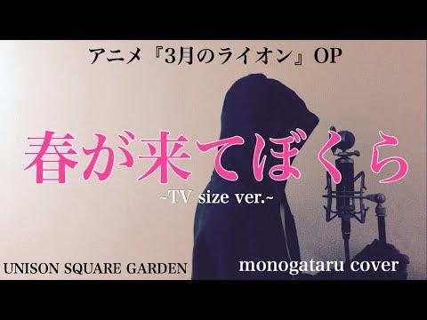【歌詞付き】 春が来てぼくら ~TV size ver.~ (アニメ『3月のライオン』OP) - UNISON SQUARE GARDEN (monogataru cover)