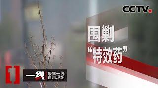 """《一线》 围剿""""特效药"""" 20200427   CCTV社会与法"""