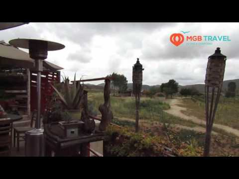 Valle de Guadalupe by MGB Travel