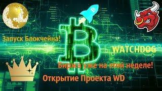 Открытие Проекта [Watchdog] Запуск Блокчейна! Скоро КОНКУРС! #WD #MN #BTC