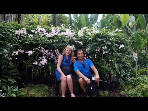 Botanic Garden Singapore - 15 avril 2017