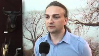 """Wystawa """"Zwierzęta Czarnej Afryki"""" w tomaszowskim muzeum"""
