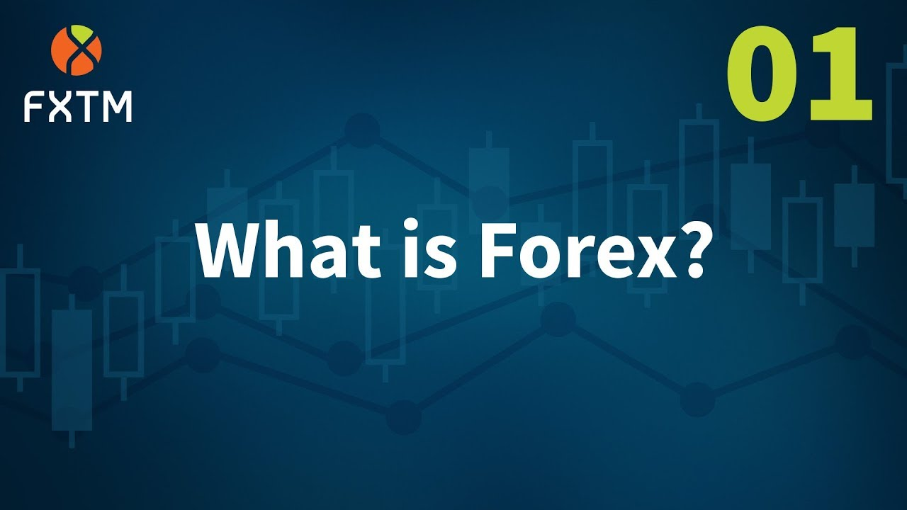 How to do a forex trading sergio savaglia investment