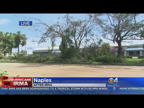 Cleanup Beings After Naples Feels Brunt Of Hurricane Irma