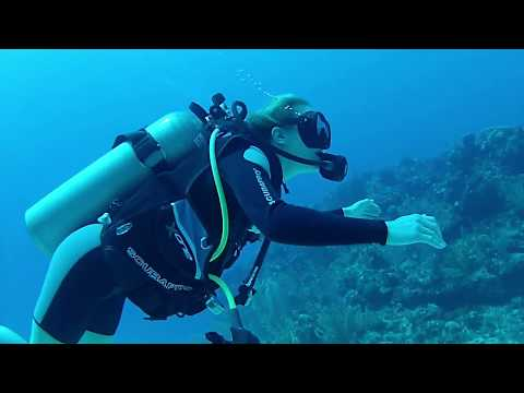 Maddie's Grand Cayman Scuba Diving Adventure