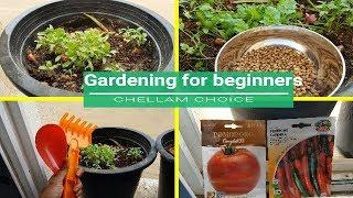 Gardening for beginners in tamil /Gardening in UAE in tamil