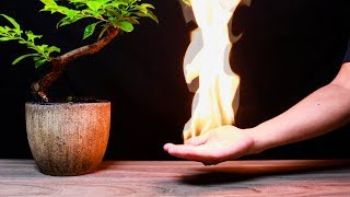 10 AWESOME FIRE TRICKS!