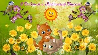 С Добрым и Ласковым Утром! Красивое пожелание  Доброго Утра от Женского  Клуба  ДИВИЯ!