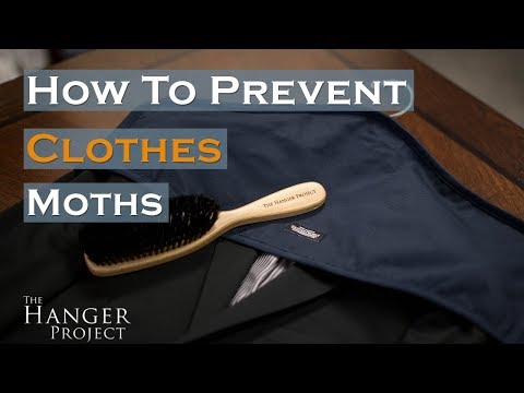How to Prevent Clothes Moths