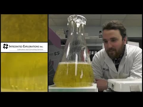 Molecular Detection System Testimonial | 3M Canada | Food Safety | Integrated Explorations