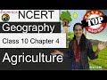 NCERT Class 10 Geography Chapter 4: Agriculture