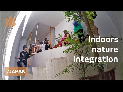 "Yokohama narrow tiny house ""breathes"" & attracts local nature"