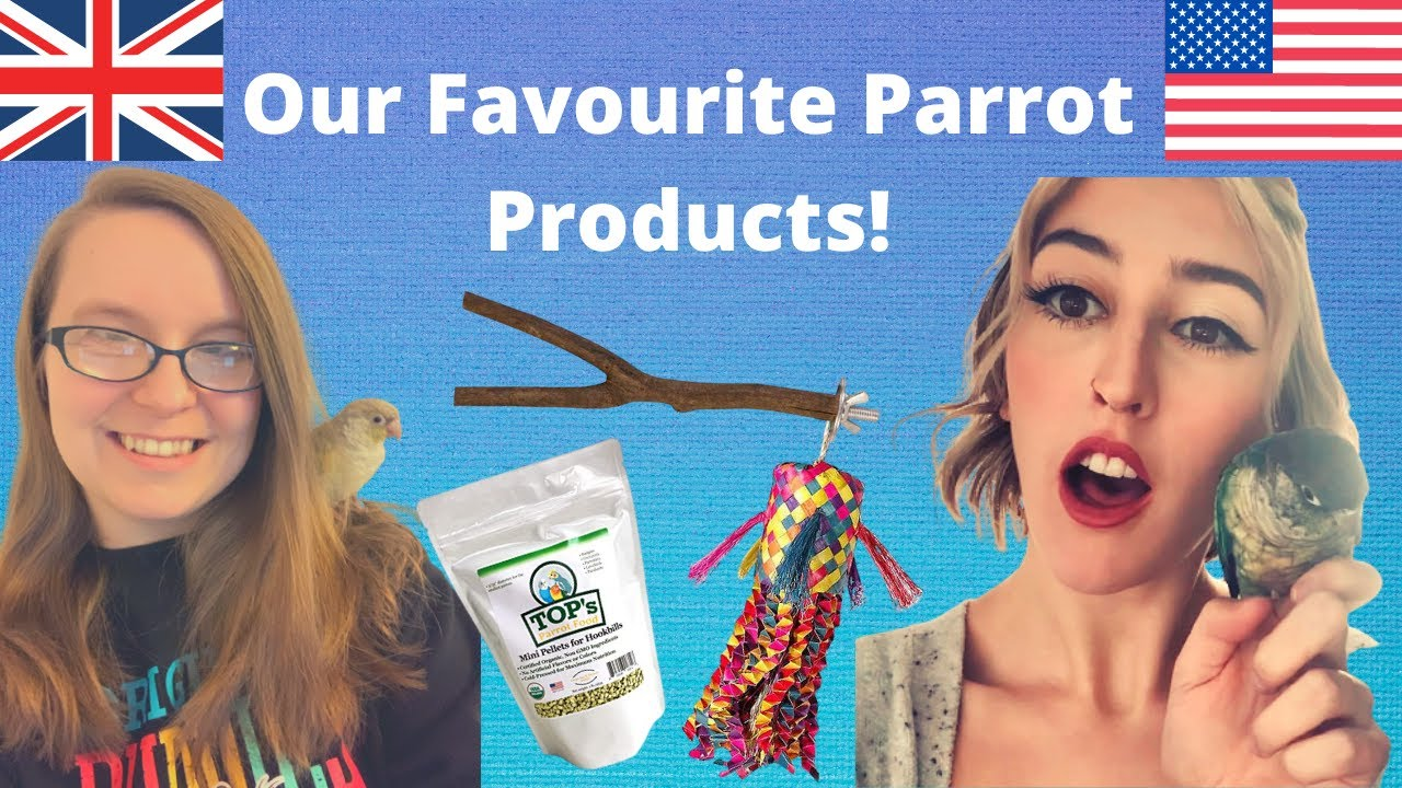 Top 10 Favourite Bird Products with Parrot Talk! 🦜 | BirdNerdSophie