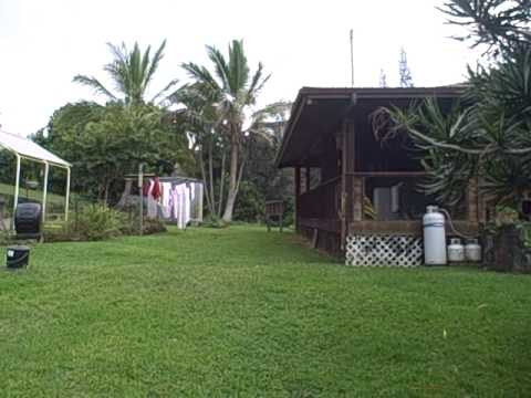 Kona Earth Coffee Farm in Kona, Hawaii - YouTube