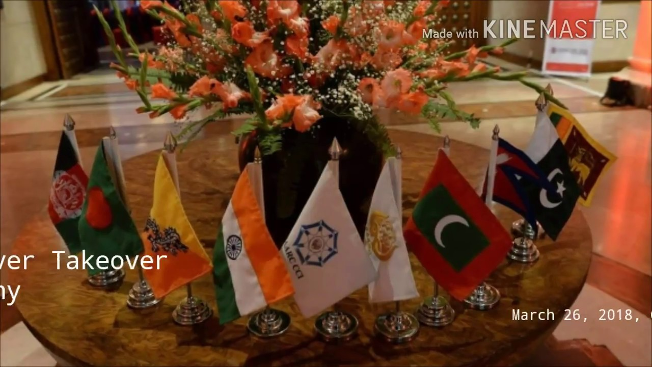activities of saarc