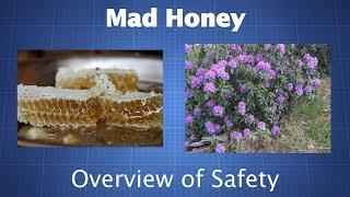 Mad Honey (Grayanotoxin): You Should Probably Avoid It