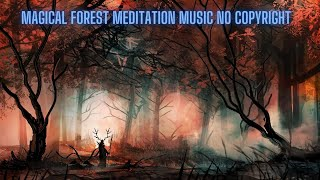 Magical Forest Meditation Music No Copyright