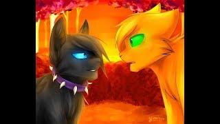 Коты Воители - Бич И Огнезвезд (Заказ Для: Алина Cat) (Песня: День, Ночь)