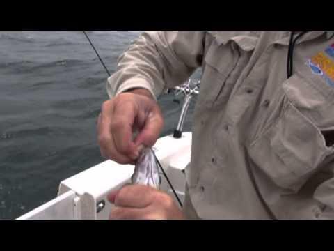Fishin Port Phillip Bay