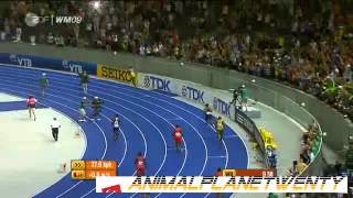 Usain Bolt 100m in 9.58 seconds - New World Record - WM 2009 in Berlin