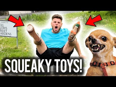 SUPERGLUED SQUEAKY TOYS TO MY BRO! - HUMILIATING