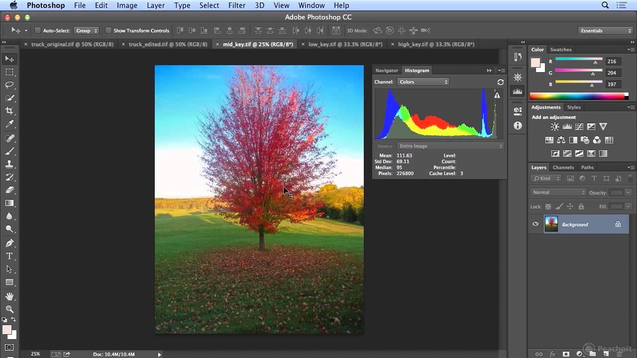 Αποτέλεσμα εικόνας για histogram photoshop