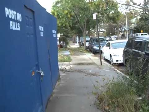 Frankenstorm Sandy Aftermath - Midwood Brooklyn
