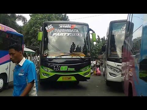 Om Telolet Om Bus Horn Compilation