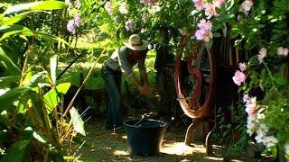 Cop 21 : portrait d'un affranchi jardinier