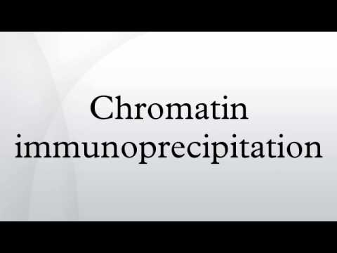 Chromatin immunoprecipitation