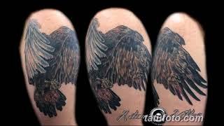 Значение тату беркут - примеры готовых рисунков татуировки на фото