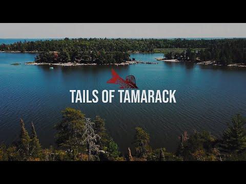 Tails Of Tamarack: Musky Fishing In Ontario | Full Film