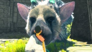 The Last Guardian Top 10 Cutest Moments