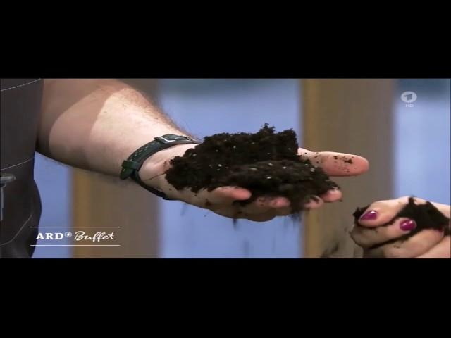 ARD-Buffet: Frühjahrskur für Zimmerpflanzen - gute Erde als Basis