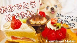 皆さま!ありがとうございます(*^^*) 「すろーな犬さん」の登録が100人...