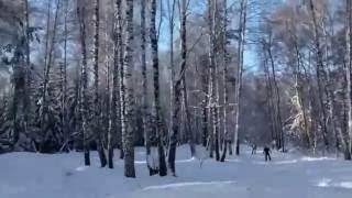 Л.б. А.Тульского
