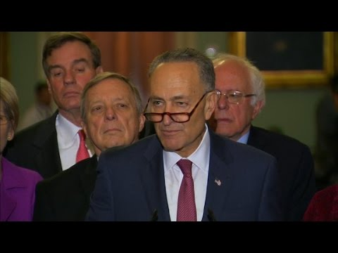 Schumer elected Senate Minority Leader Democrats tapped Chuck Schumer as their lea