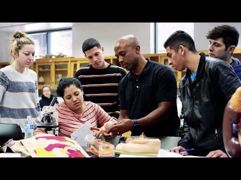 LBCC-Long Beach City College – The Place to Be