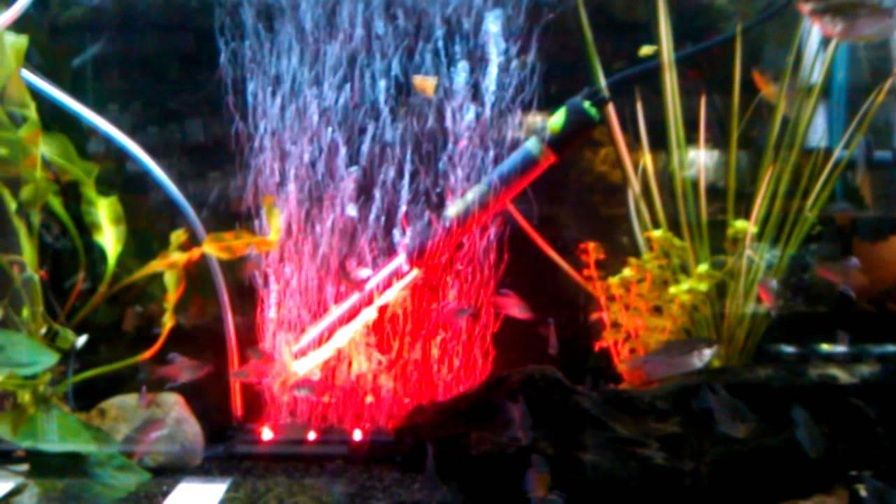 LED Aquarium Air Curtain RED - YouTube