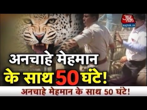 Vardaat: Leopard Enters Meerut Cantt In Uttar Pradesh