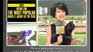 「最受歡迎馬匹」選舉 - 藝人朱慧珊小姐支持陽明飛飛