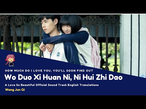 Wo Duo Xi Huan Ni, Ni Hui Zhi Dao - Wang Jun Qi - Eng Lyrics