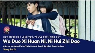 [ENG SUB] Wo Duo Xi Huan Ni, Ni Hui Zhi Dao - Wang Jun Qi