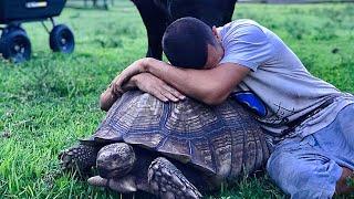 HUGS with GIANTS!! (I like turtles)