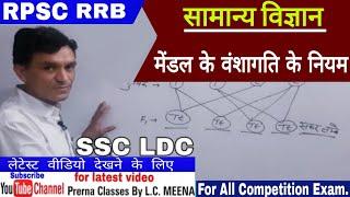 मेंडल के आनुवंशिकता के नियम || सामान्य विज्ञान || RPSC SSC रेलवे 1st ग्रेड LDC Patwar raj.police