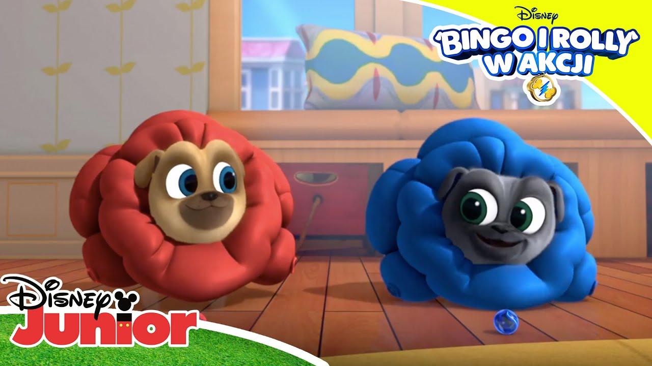 ???? Prezentacje | Bingo i Rolly w akcji | Disney Junior Polska