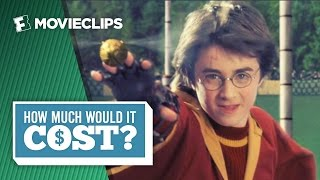How Much Would It Cost: To Be A Wizard Like Harry Potter (2016) HD