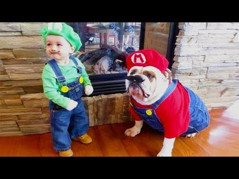 Dog loves Baby | Try Not To Be Impressed Baby and Dog Cosplay Together