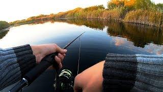 Осенняя рыбалка на спиннинг! Что случилось с каналом? Куда мы пропали?