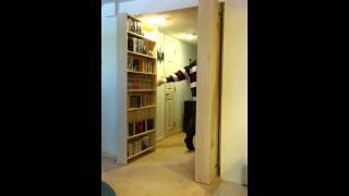 Hidden Bookcase Doors To Secret Lair